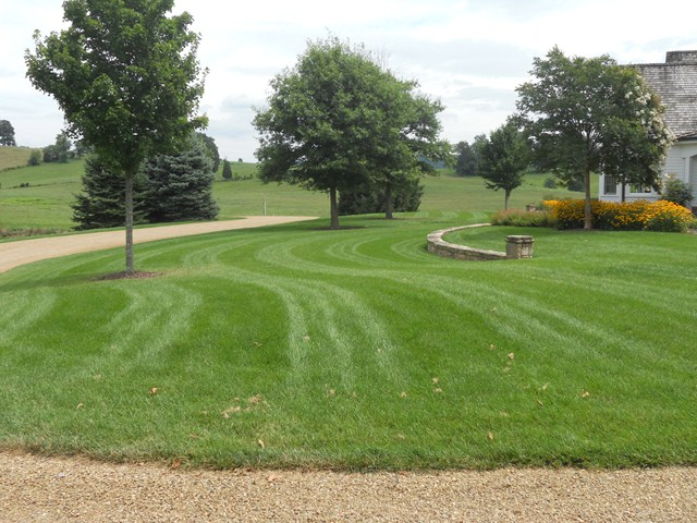 Lawn Maintenance in Johnson City, Tennessee