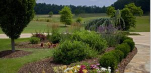 Garden Maintenance in Kingsport, Tennessee